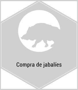 Servicios. Compra de jabalíes. Centro de caza Murieta Navarra