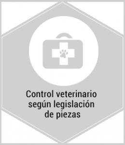 Servicios. Control veterinario según legislación de piezas. Centro de caza Murieta Navarra